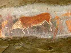 Kamberg - Bushman Rock Art